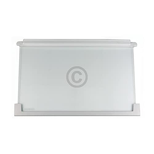 Glasplatte Regal für Kühlschrank Ersatz für AEG Electrolux...
