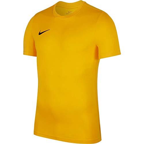 NIKE Herren Kurzarm T-Shirt Trikot Park VI, Gold (University...
