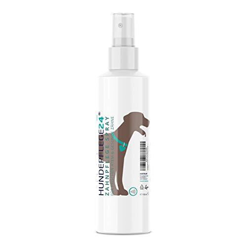 Hundepflege24 - Zahnpflege Dentalspray für Hunde & Katzen - 150ml -...