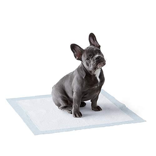 Amazon Basics Puppy Pads Trainingsunterlagen für Welpen,...