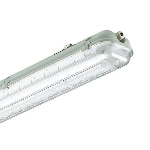Philips Leuchtstofflampe, 2x58 W, hellgrau, TCW060