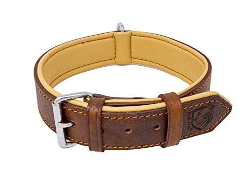 Riparo Echtes Leder Verstellbares K-9 Hundehalsband mit Zusätzlicher...
