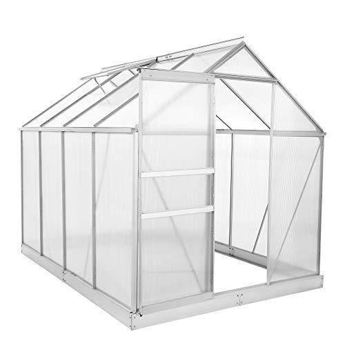 Zelsius Aluminium Gewächshaus für den Garten | inklusive Fundament |...
