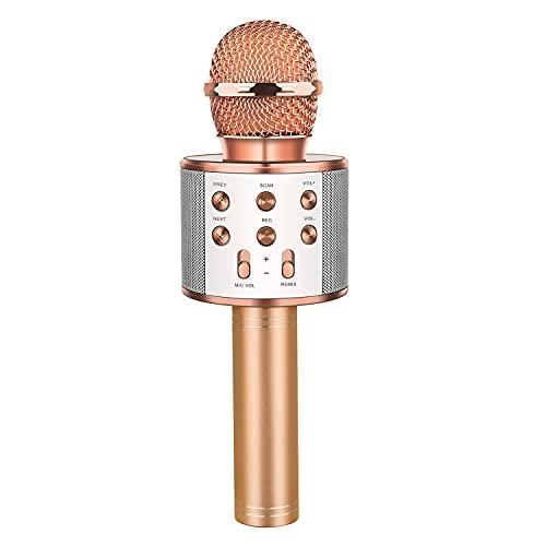 LetsGO toyz Mikrofon Kinder, Geschenke für Kinder Spielzeug Jungen...