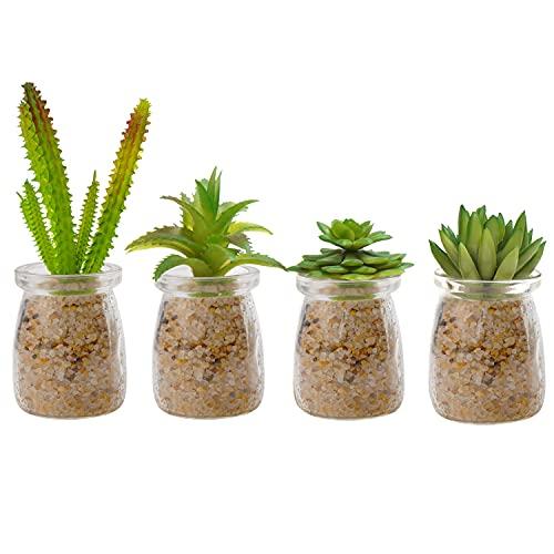 Belle Vous Mini Sukkulenten Künstlich Pflanzen im Glas (4 Stk) –...