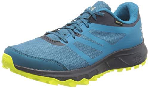 Salomon Herren Trail Running Schuhe, TRAILSTER 2 GTX, Farbe: blau...