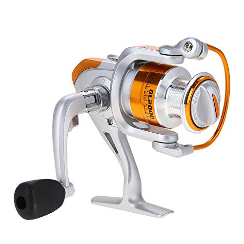 Dilwe Angelrolle-Rad, 12BB 5,2: 1 Metallic Boat Rock Spinning Casting...