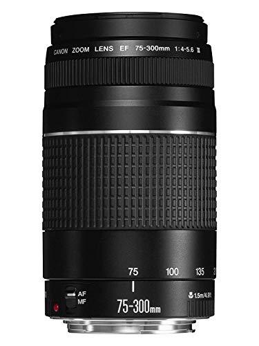 Canon EF 75-300mm F/4-5.6 III Objektiv (58 mm Filtergewinde) schwarz