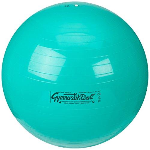 Pezziball Gymnastikball Pezzi 65 cm