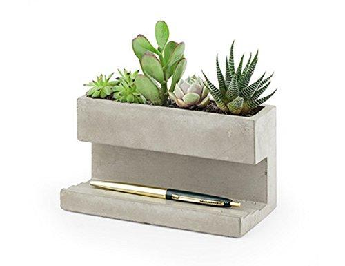 Kikkerland PL02-L Pflanzentopf aus Beton für am Schreibtisch, Go...