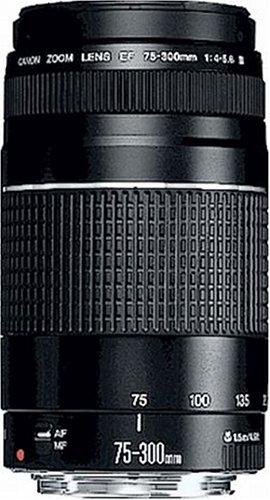 Canon Teleobjektiv EF 75-300mm F4.0-5.6 III für EOS (58mm...