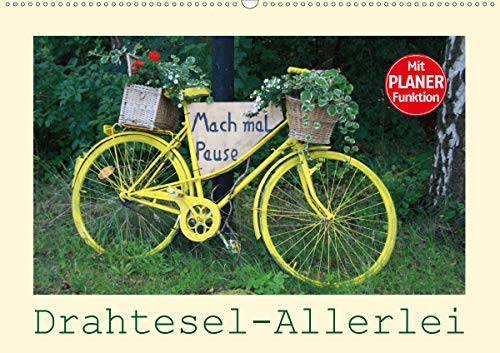 Drahtesel-Allerlei (Wandkalender 2021 DIN A2 quer)