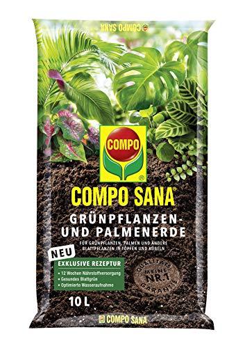 COMPO SANA Grünpflanzen- und Palmenerde mit 12 Wochen Dünger für...