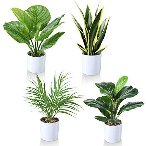 Kazeila Kunstpflanzen 40cm Geigenblattfeige/Schlangenpflanze/Areca...