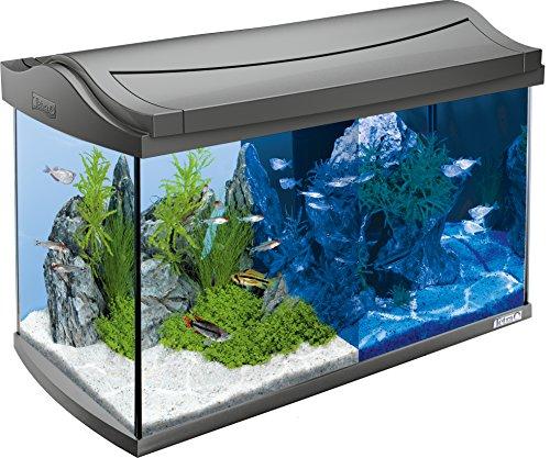 Tetra AquaArt Discovery Line LED Aquarium-Komplett-Set 60 Liter...