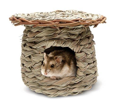 Living World Green Schilfgrashütte für Hamster und Mäuse