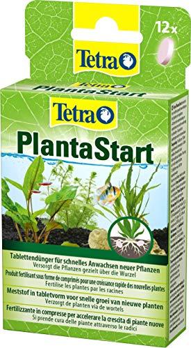 Tetra PlantaStart Düngetabletten (für prächtige Wasserpflanzen im...