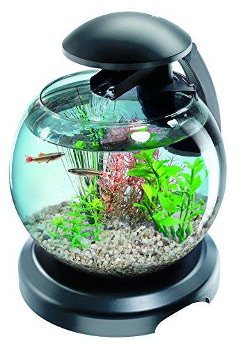 Tetra Aquarium Betta Cascade Globe