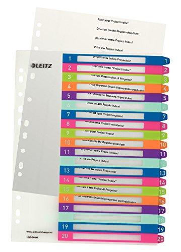 Leitz Register für A4, PC-beschriftbares Deckblatt und 20...