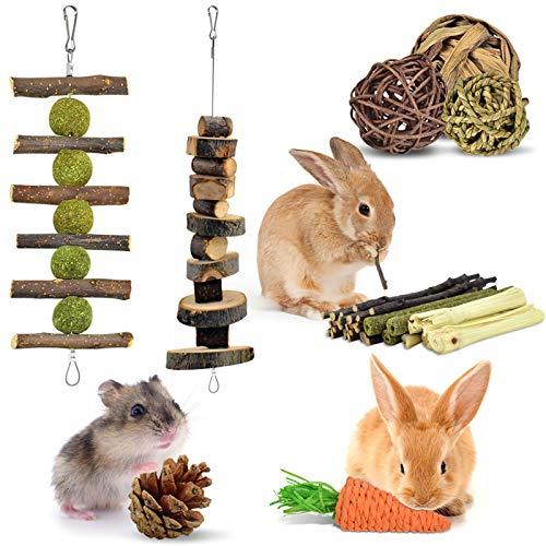 ERKOON Kaninchen Kauspielzeug Hasen 8 Stück Beschäftigung Kleintiere...