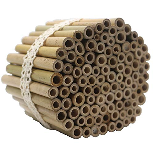 Super Idee 200 Stück 10cm Länge Bambusröhrchen Füllmaterial...