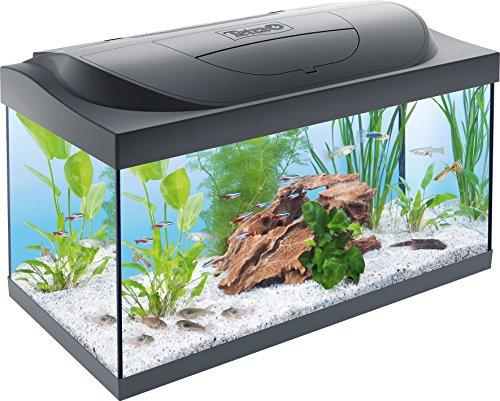 Tetra Regular Starter Line Aquarium-Komplettset mit LED-Beleuchtung...