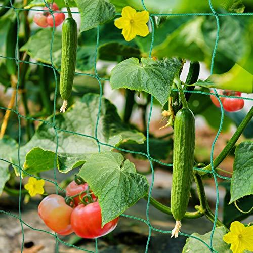 HUTHIM Ranknetz Rankhilfe Garten Tomaten Gurken 2x2.5m, Großer...
