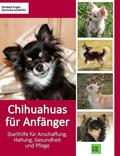 Chihuahuas für Anfänger: Starthilfe für Anschaffung, Haltung,...